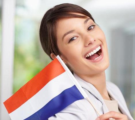 ВУЗы Нидерландов